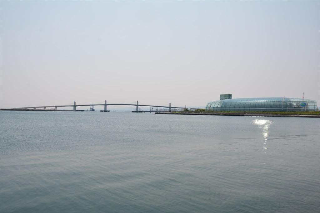 小名浜港_12