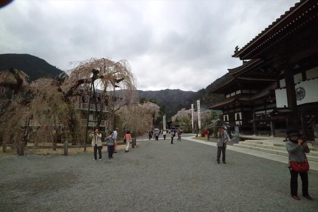 仏殿前から見た本堂方向の様子_2