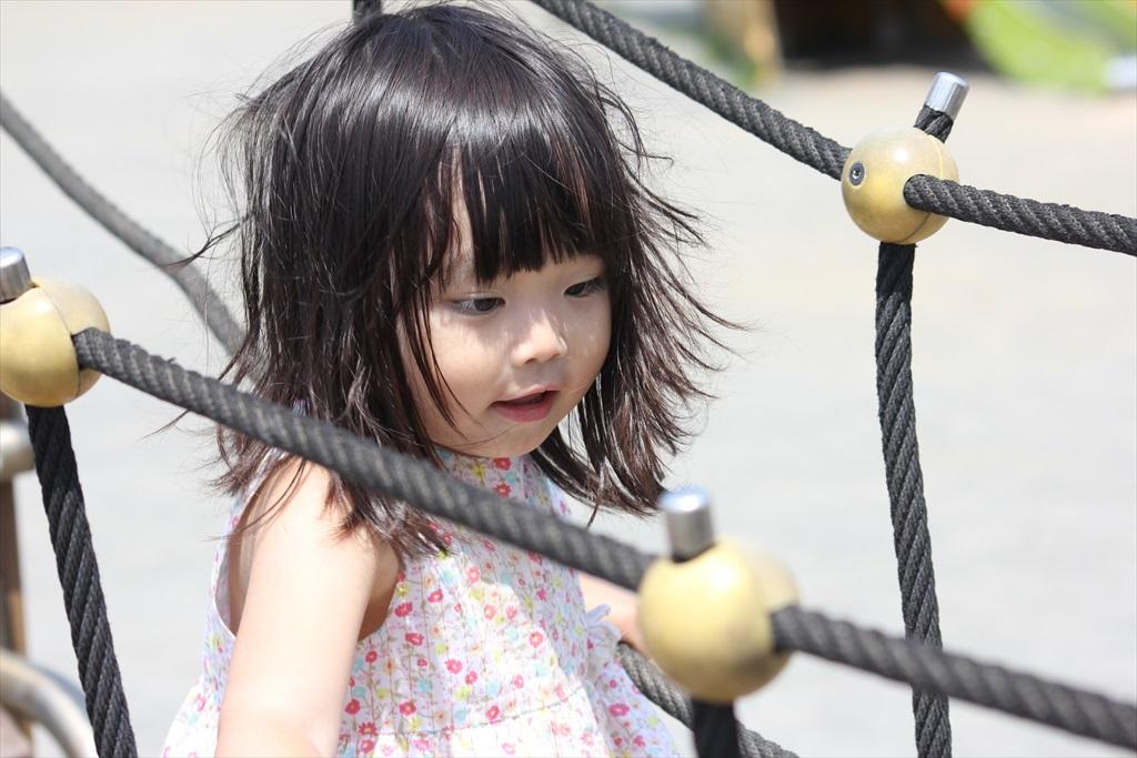 『長井海の手公園 ソレイユの丘』にて(2)_6