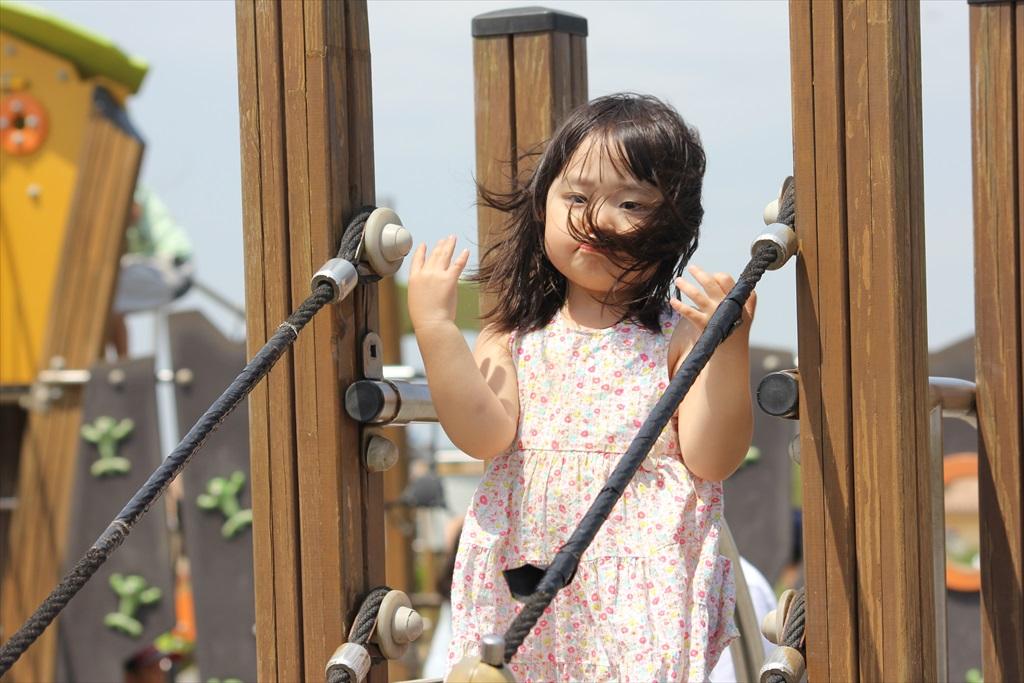 『長井海の手公園 ソレイユの丘』にて(2)_15