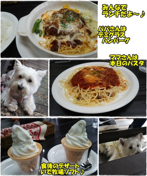 cafe&run23