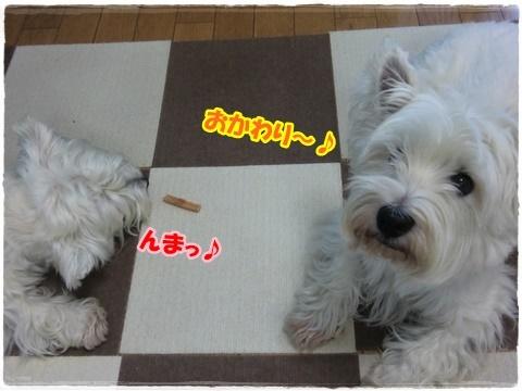 azukiai2_20160725203826764.jpg