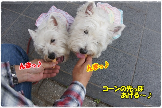 bihoku14.jpg