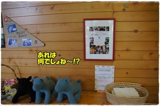 cafe10_20160921200758383.jpg