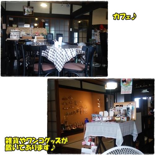 cafe3_201607211702103d4.jpg