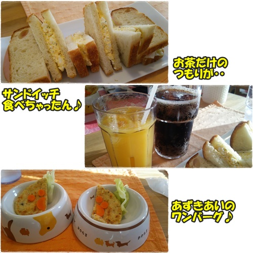 cafe4_201604252358058d6.jpg
