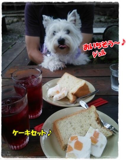 cafe6_20161002195057e11.jpg