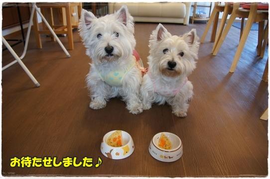 cafe7_20160426001859df2.jpg