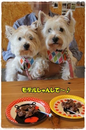 cafe9_201607061806328c9.jpg
