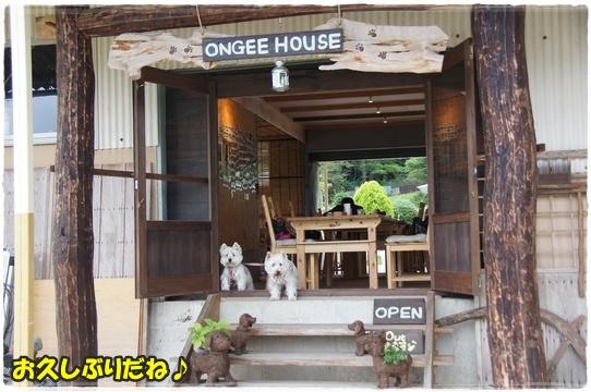 cafe_201607051838444a7.jpg