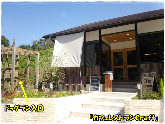 cafe_201610101857246b7.jpg