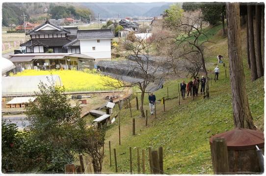 katakuri2.jpg
