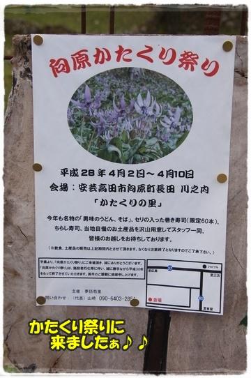 katakuri_20160415230544826.jpg