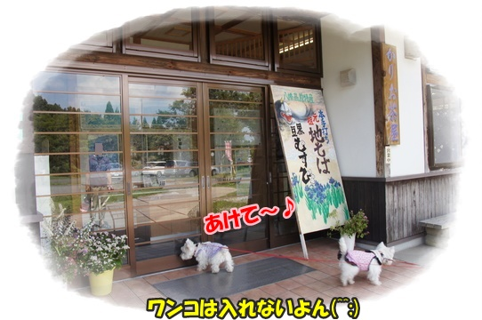 park1_201609261840114a0.jpg