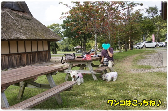 park2_201609261840119fd.jpg