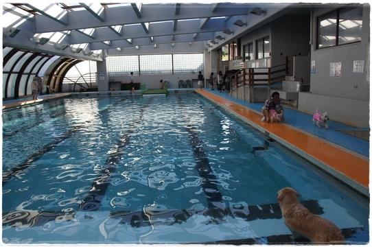 pool_20160518171435b55.jpg