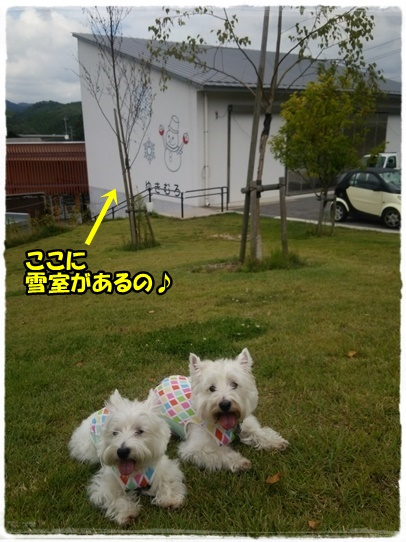 takano3.jpg