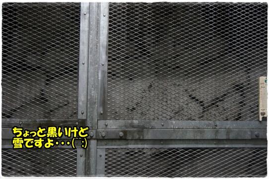 takano5.jpg