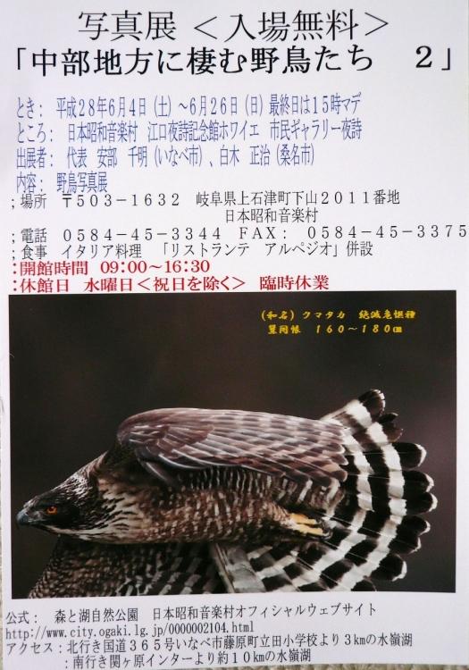 P1180008s.jpg
