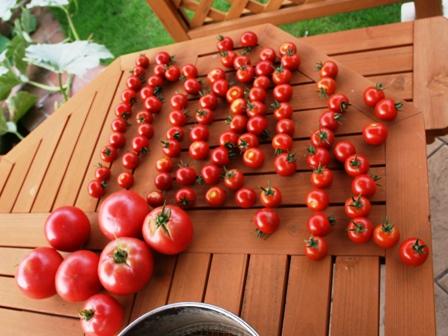20160727トマト
