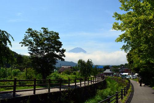 頭だけ富士山