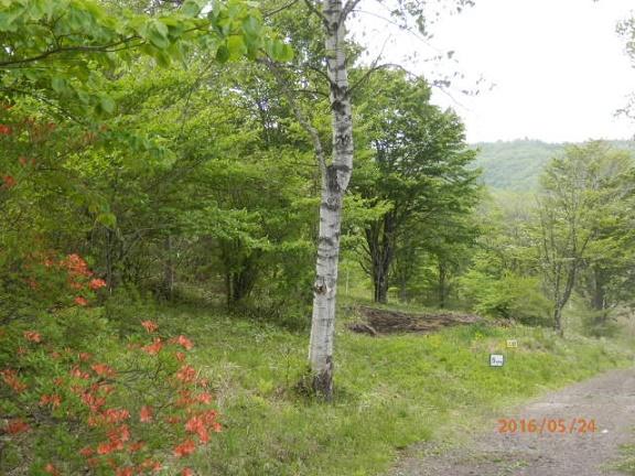 バラギ高原キャンプ場プライベートゾーン