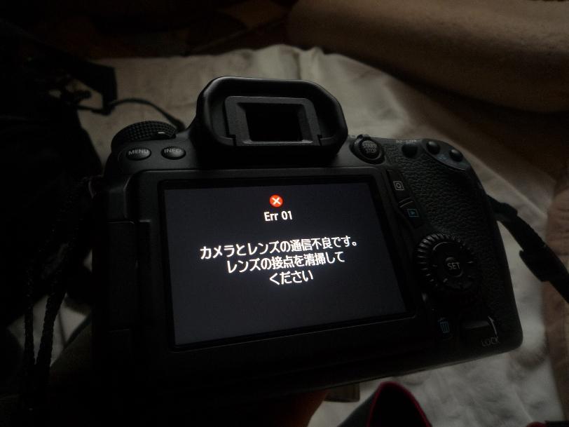 P1050204.jpg