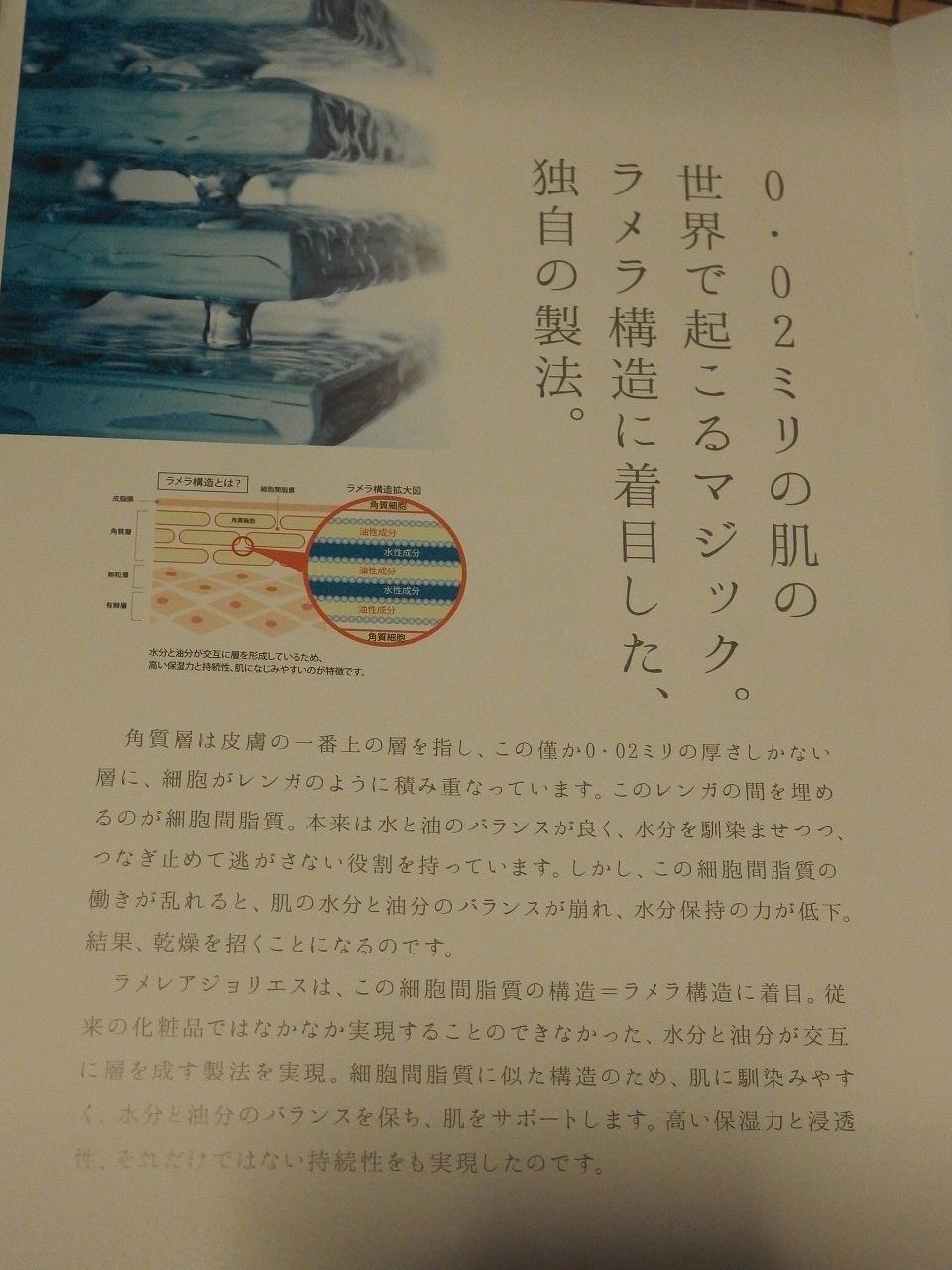 s-PA040010.jpg