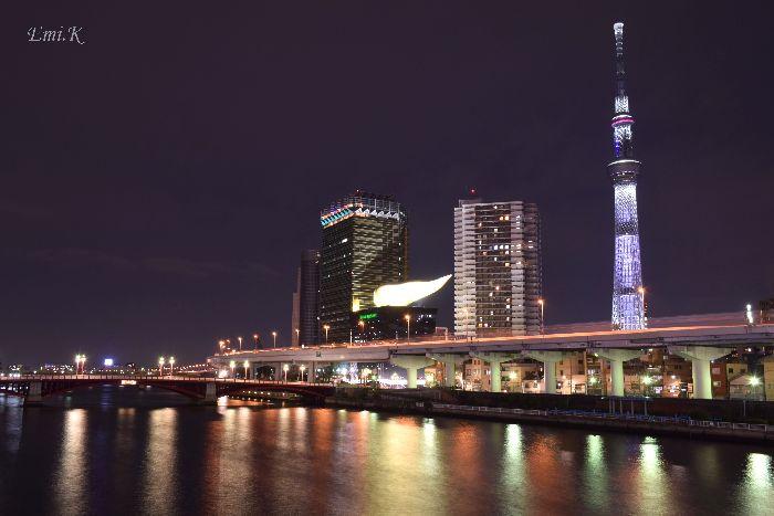 009-New-Emi-スカイツリー咲