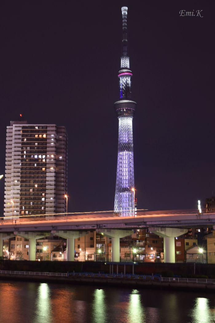 002-New-Emi-スカイツリー咲