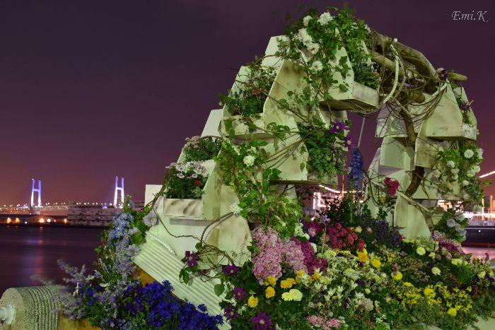 085-New-Emi-山下公園花壇展-横浜ベイブリッジ