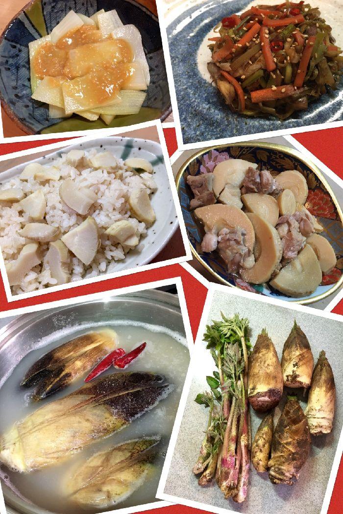 012-たけのこ-うど料理