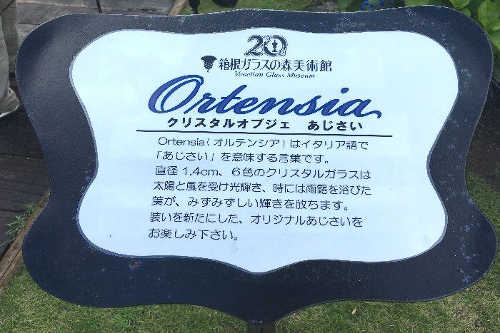 010-オルテンシア看板