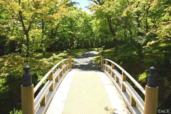 021-New-Emi-橋