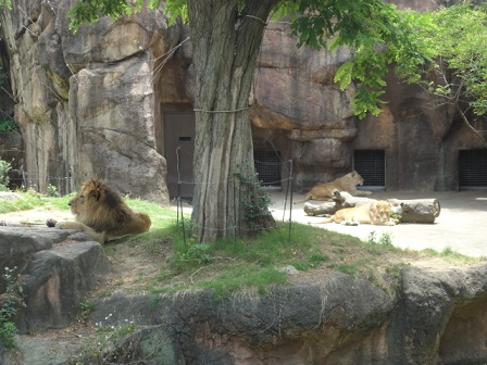 天王寺動物園⑩