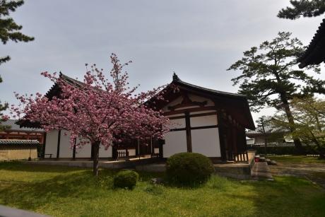 5日本最古の食堂