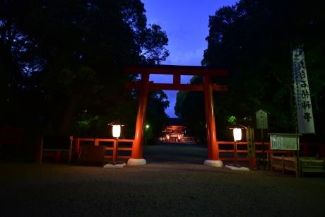 29夜の神社
