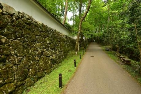 16コケの石垣
