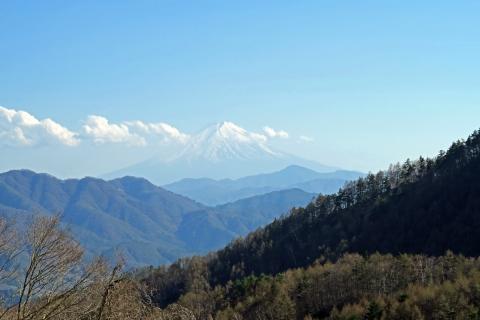 22柳沢峠DH富士山