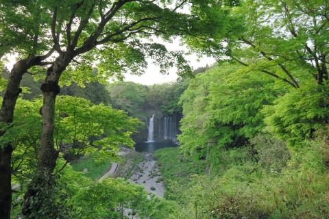 29白糸の滝