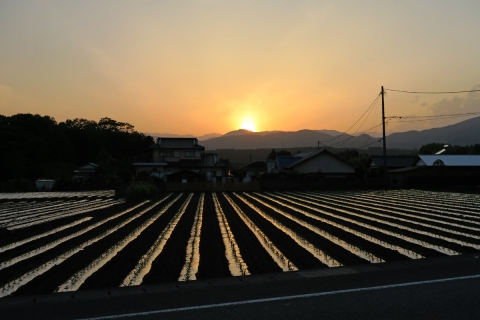 32日没の富士宮