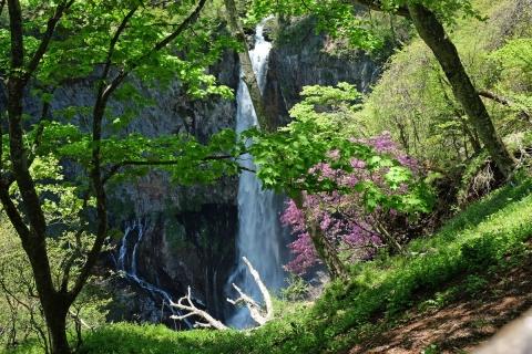 13華厳の滝
