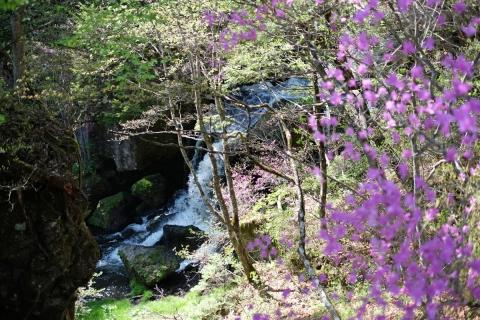 33竜頭の滝部分
