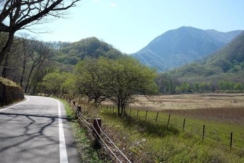 38小田代ヶ原を巡る道