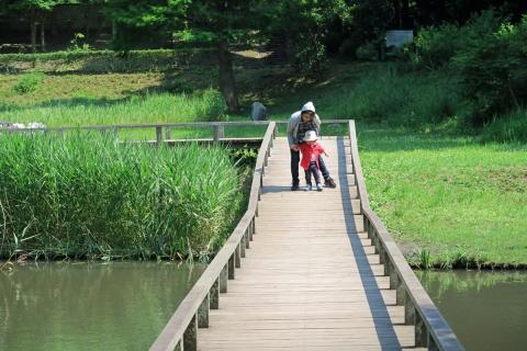 12新林公園