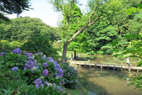 15新林公園
