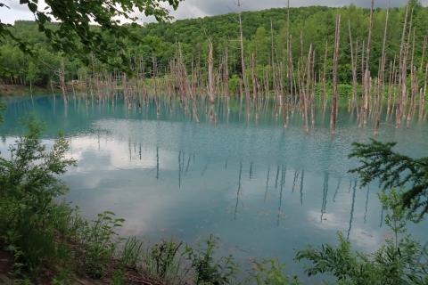 02-12青い池