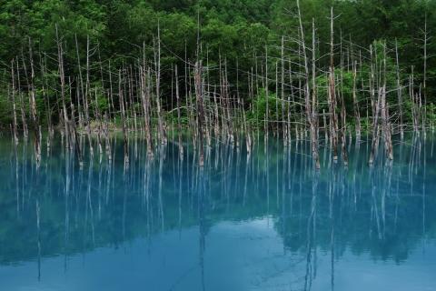 02-13青い池