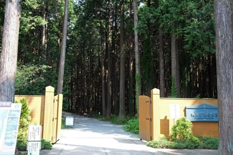 06秩父宮記念公園