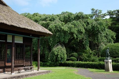 15秩父宮記念公園茅葺と銅像